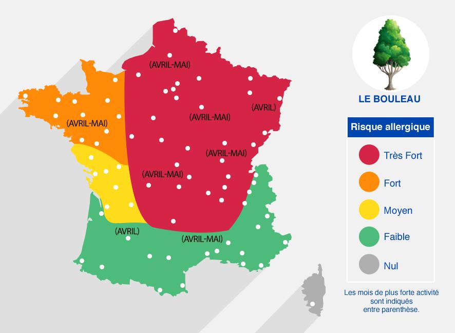 carte des risques allergiques dûs au bouleau (mois les plus forts en avril-mai) - très fort dans le nord-centre et est de la France. Faible dans le sud de la France