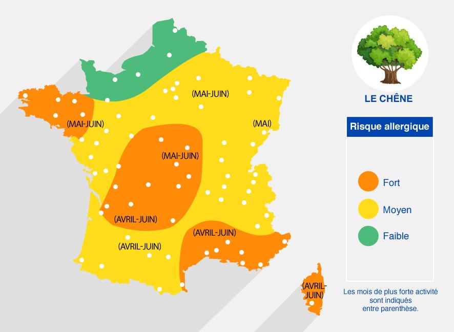 carte des risques allergiques dûs au chêne (mois les plus forts en avril-juin) - fort dans le centre, la bretagne, le PACA et la Corse. Faible dans le nord de la France