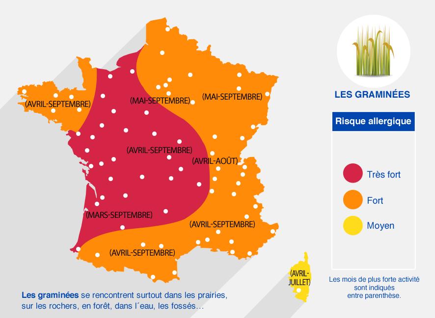 carte des risques allergiques dûs aux graminés. Très fort dans l'ouest (de avril à septembre). Fort dans l'Est et la Bretagne. Moyen en Corse.