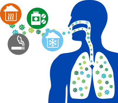 schéma sur les causes des nez secs et fragiles